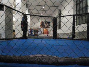Тренировки по единоборствам (бокс, тайский бокс, грепплинг, кикбоксинг, ММА). Тренировки СВАО.