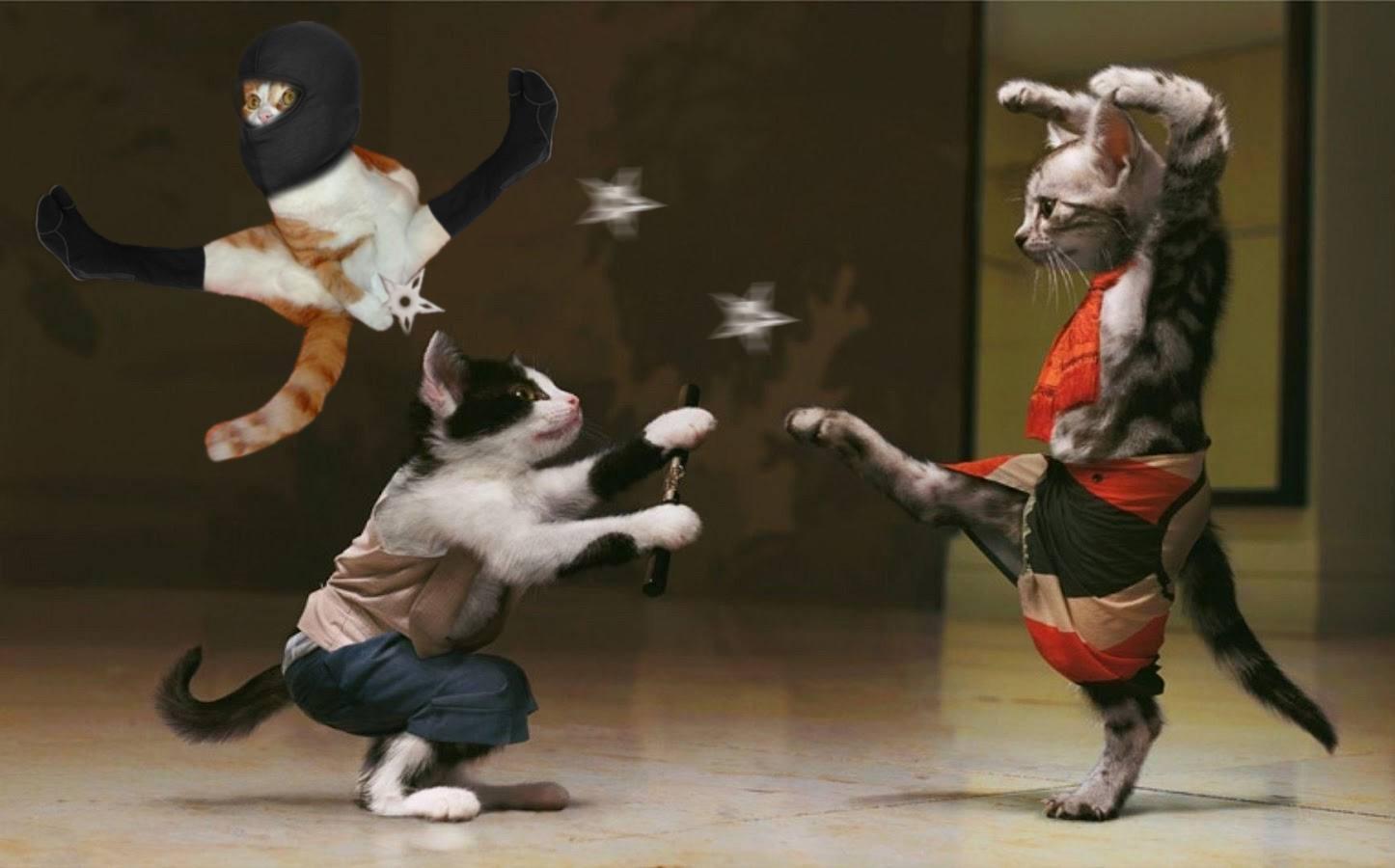Боевые искусства в России