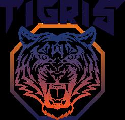 Клуб единоборств Tigris