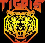 Клуб единоборств TIGRIS - логотип золотой
