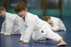 Детская секция боевых искусств