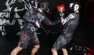 Тренировки по боксу в клубе Tigris