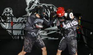 Бокс в СВАО Москвы